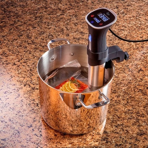 Sous Vide Machine Reviews