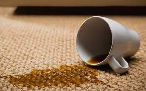 how to make your own carpet cleaners