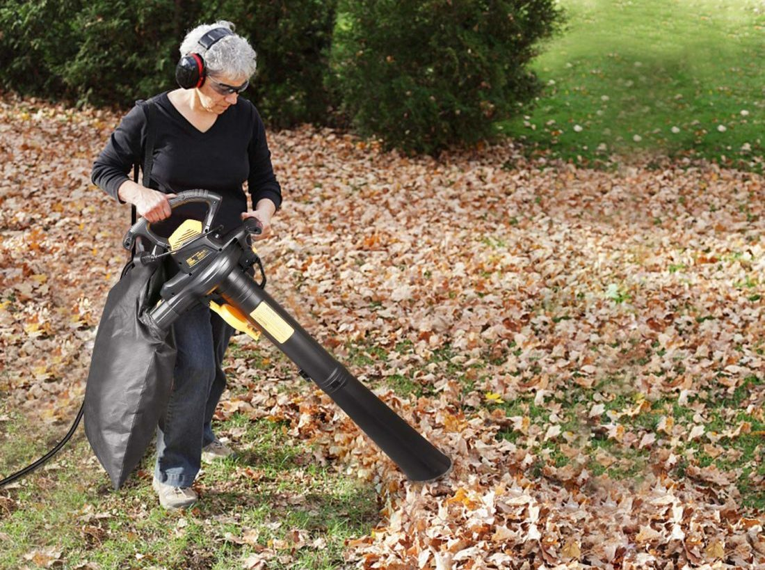 top rated leaf vacuum